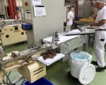 Chocolate bars production double line Sapal  #52