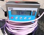 Waga Berkel 600 kg #2